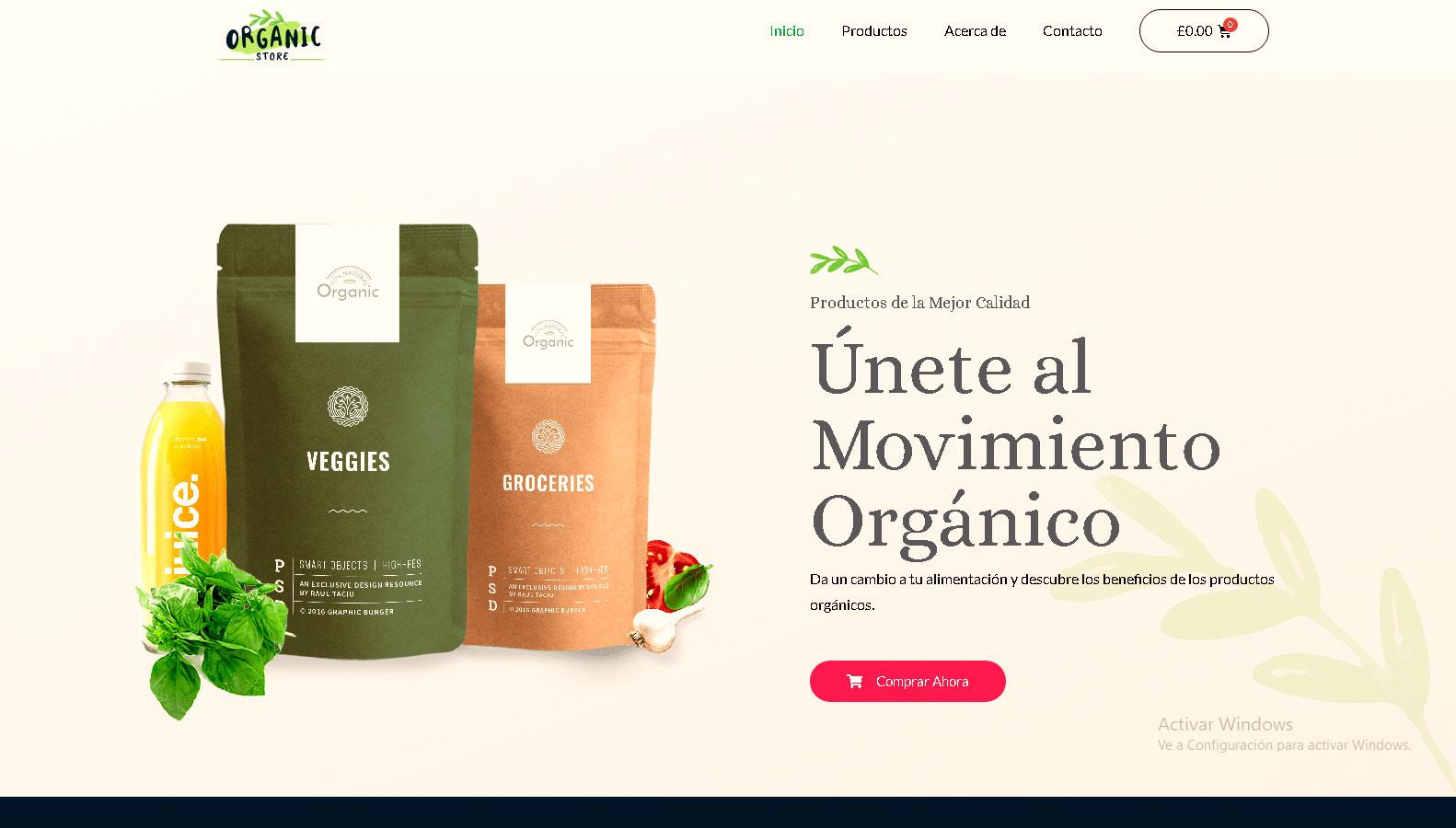 diseños-de-pagina-web-para-tiendas-organizas